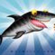 Shark666