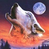 Mr.Wolfskill