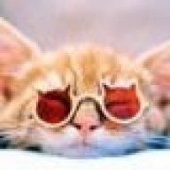 Redcatkatze