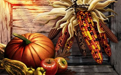 Free Thanksgiving iPad Wallpapers